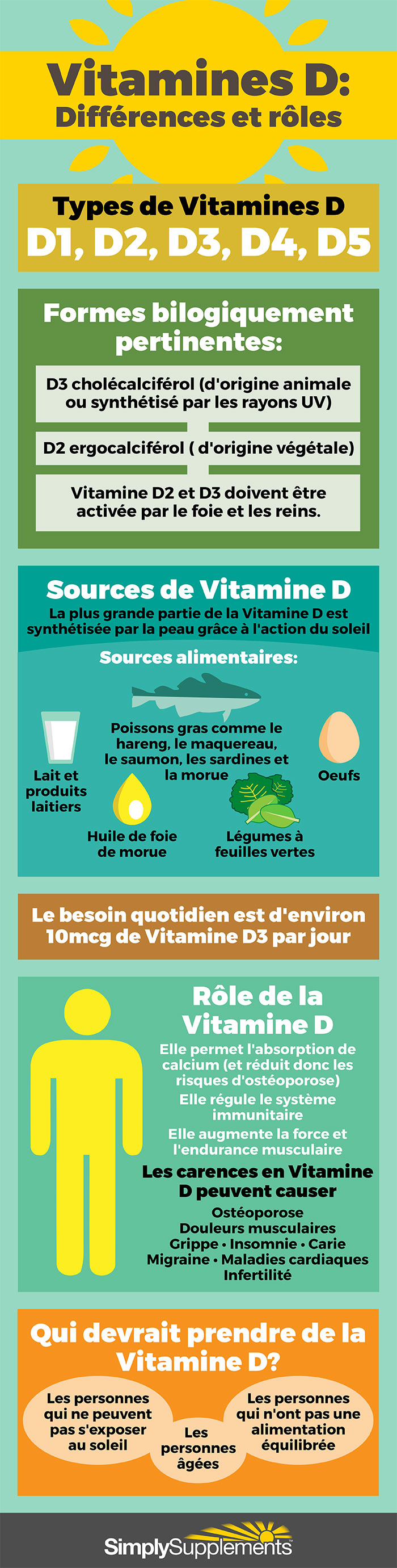 vitamines-d-difference-et-role