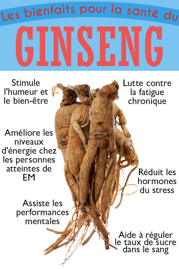 les-bienfaits-anti-fatigue-du-ginseng