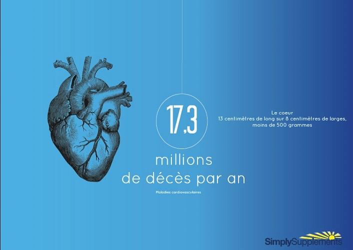 les-maladies-cardiovasculaires
